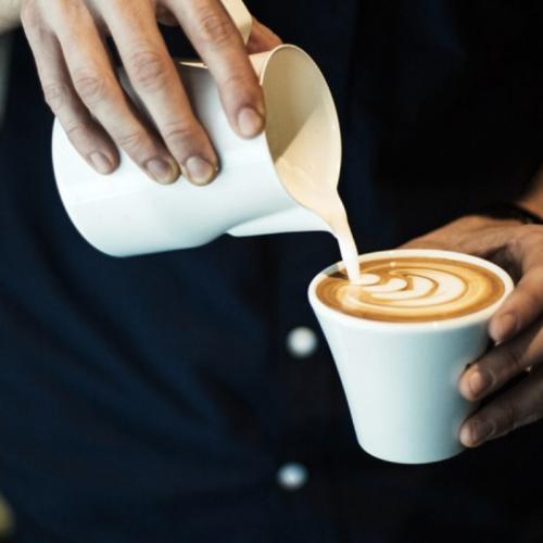 MEDELLÍN - BARISTA CAFÉ WORKSHOP
