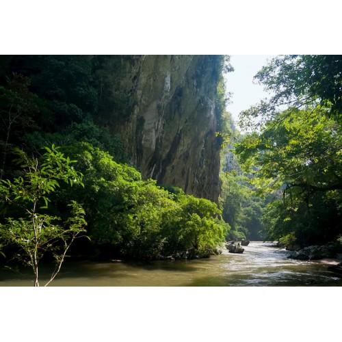 Tour Rio Claro - Ecología y aventura