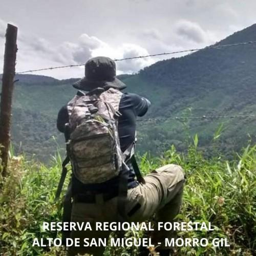 RESERVA FORESTAL PROTECTORA REGIONAL, MORRO GIL, ALTO DE SAN MIGUEL - REGIONAL ANTIOQUIA