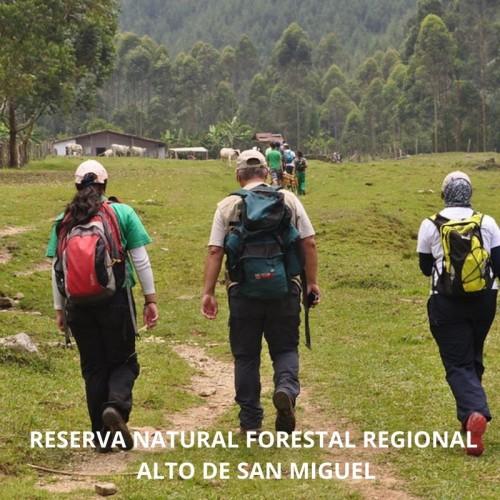 RESERVA FORESTAL PROTECTORA REGIONAL, ALTO DE SAN MIGUEL, NACIMIENTO DEL  RíO MEDELLIN CALDAS,  REGIONAL  (ANTIOQUIA)
