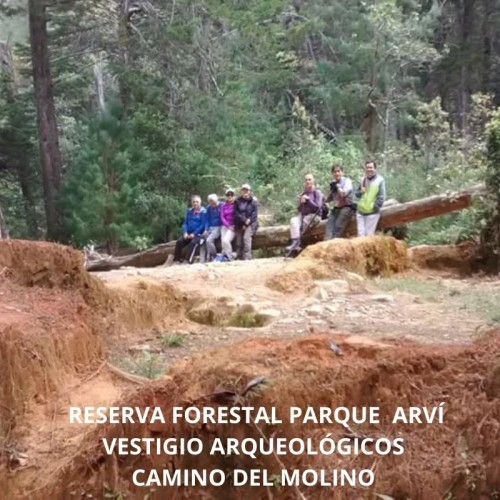 RESERVA FORESTAL PARQUE ARVÍ -   CAMINO DEL MOLINO Y VESTIGIOS ARQUEOLOGICOS - EMPRESARIAL, REGIONAL ( ANTIOQUIA)