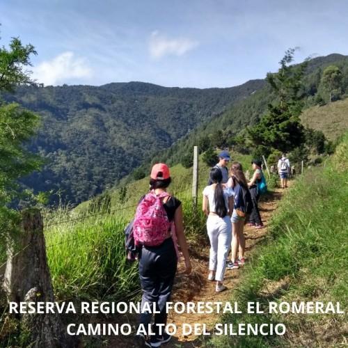RESERVA FORESTAL EL ROMERAL - ALTO DEL SILENCIO  CORREGIMIENTO SAN ANTONIO DE PRADO   MUNICIPIO DE MEDELLIN, REGIONAL ( ANTIOQ