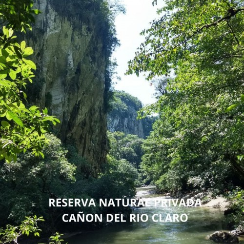 RESERVA NATURAL CAÑON DEL RIO CLARO RIO CLARO ECOSISTEMA CALCAREO Y REFUGIO DE VIDA SILVESTRE FAUNA Y FLORA