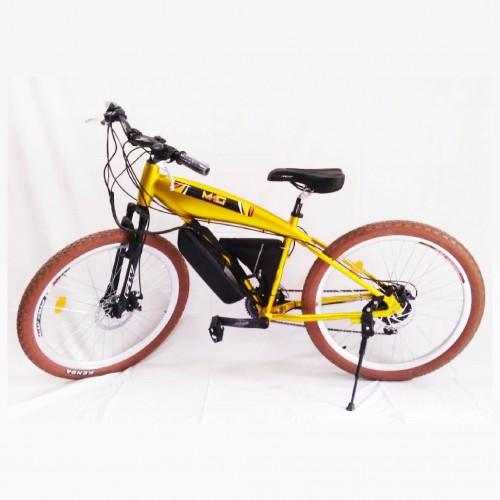 Bicicleta motor 350 w